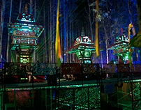 2013 electric forest observatory/asian