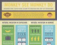 Monkey See Monkey Do Infographic