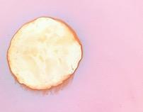 Lumen Prints of Fruit