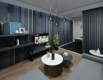 Athenian apartment renovation