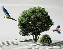 Tumpex - Dia Mundial do Meio Ambiente