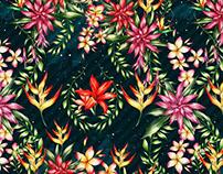 Estampa Flores do Brasil