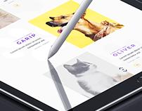 Petpal Application UI Design