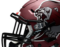 Re-Branding Concept Design: Lockhart Lions