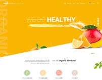Naturix - Organic Store