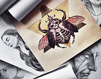 BEE'S SKELETON drawing