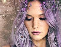 Lavender Firefly