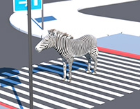 Lost Zebra at Zebra crossing