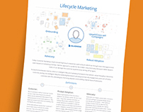 Bluenose Lifecycle Marketing