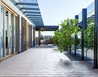 3D visualization of the terrace