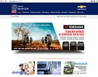 Desarrollo diseño de web Salfa Sur
