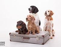 Desi, Dolly, Nuppu & Pluto