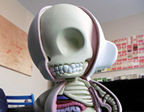 Anatomy Cross Section Munny Doll