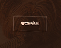 Web Desgin for Yorkmir