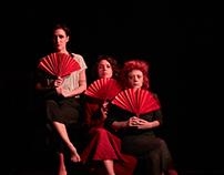 La viola e l'oleandro - a theatre play by Luisa Gay