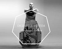 '' Digestive System ''