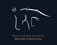 Horse training at liberty Web