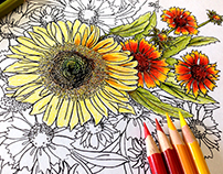 Botanical Interests Winter 2016 Coloring Book