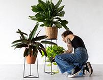 Hera plant stand