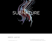 Poster Design: Subnature Exhibition
