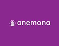 Anemona | Solução para o seu aquário