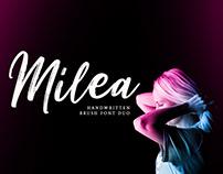 Free Milea Handwritten Brush Font