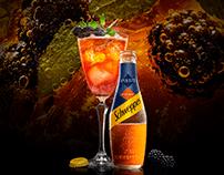 SCHWEPPES Macro World Cocktails 2019-2020