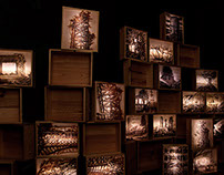 """Souvenirs"" Lightboxes"