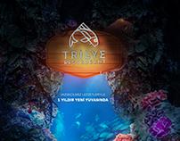 Tirilye/Magazine ADS