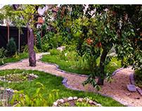 Șapte pași pentru a începe grădinăritul