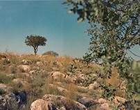 GREECE on CINEFILM
