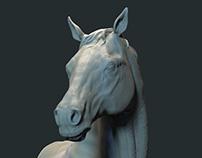 Hanoverian Horse