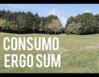 Consumo, Ergo Sum