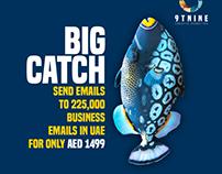 big fish ad