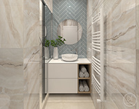 Luxury apartment - bathroom