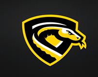 Perth Pythons