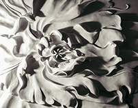 """""""Flower and the wind"""" 3D Wall"""