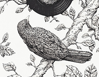 Blackbird brush and ink
