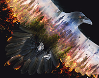 Burning Raven