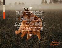 EL PERRO BARBERO