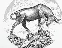 The Bull Run