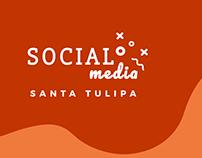 Social Media - Santa Tulipa