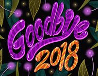 Goodbye 2018, Hello 2019