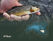 Pilker - Fishing & Camping. Product design project