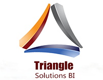 Triangle Solutions BI