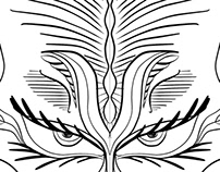 Symmetry in Procreate