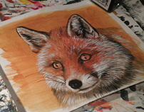 Animals Sketchbook, Study_Delirius