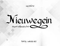 Nieuwegein Script Font