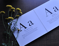 "Evolution of letterform ""A"""
