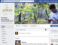 Artes para Facebook/Site   Synergia Consultoria